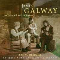 Song Of Home: An Irish American Musical Journey